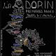 dorin-def